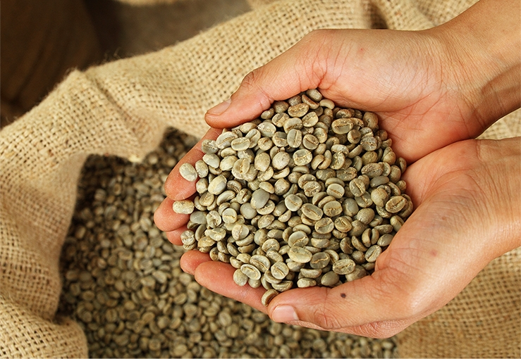 Four Reasons Why You Need to Roast Your Organic, Low Acid Coffee.
