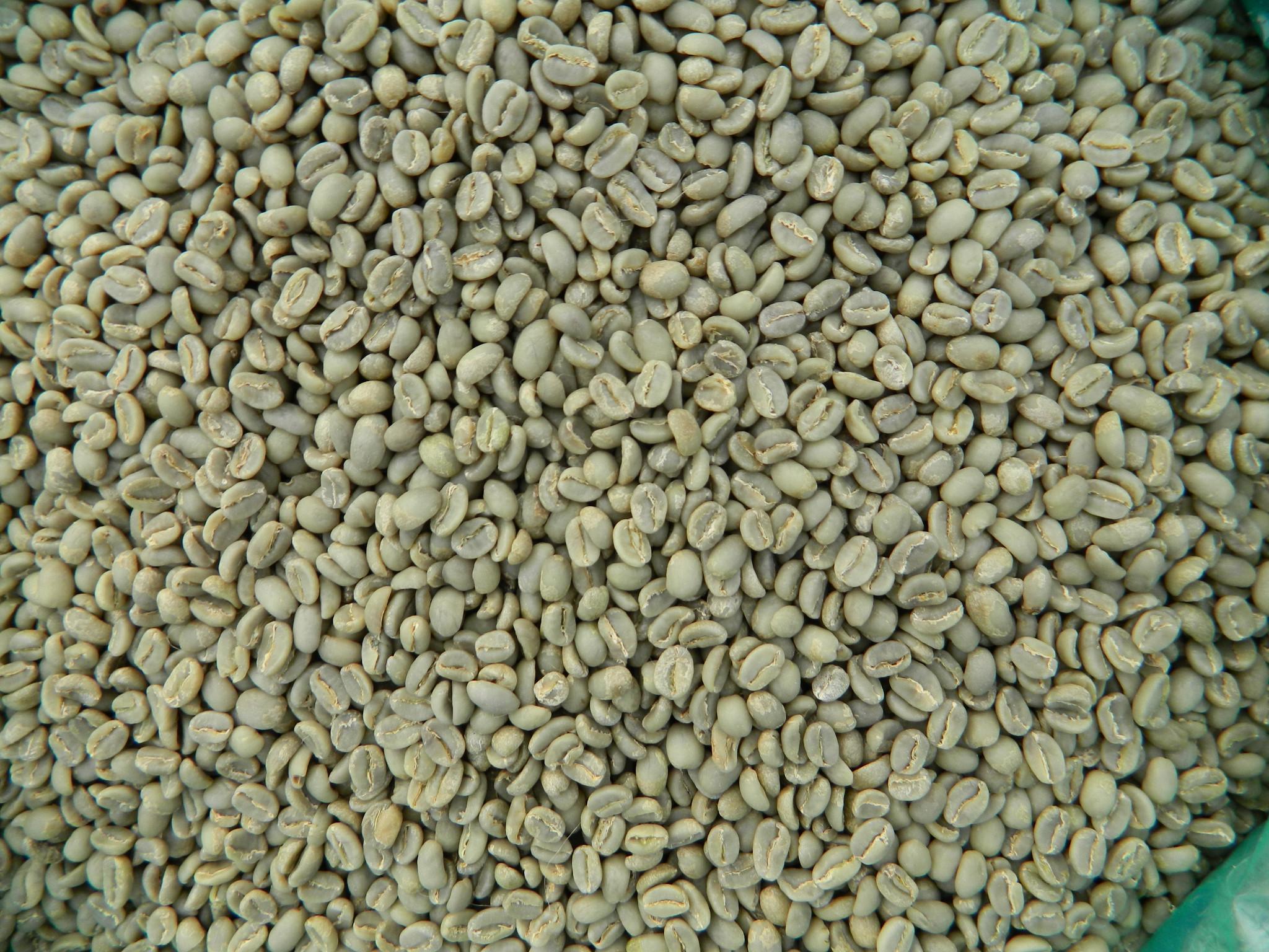 Ethiopia Yirgacheffe Idido 1 FW Arabica Coffee Beans.