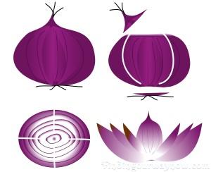 Roasted Onion Flowers: #Recipe.