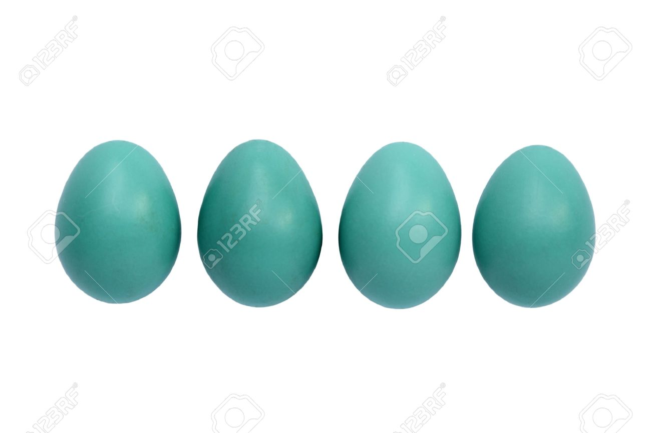Blue Robin Eggs Isolated On White Stock Photo, Picture And Royalty.