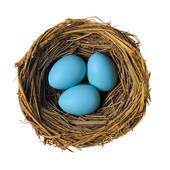 Robin's Nest Clipart.