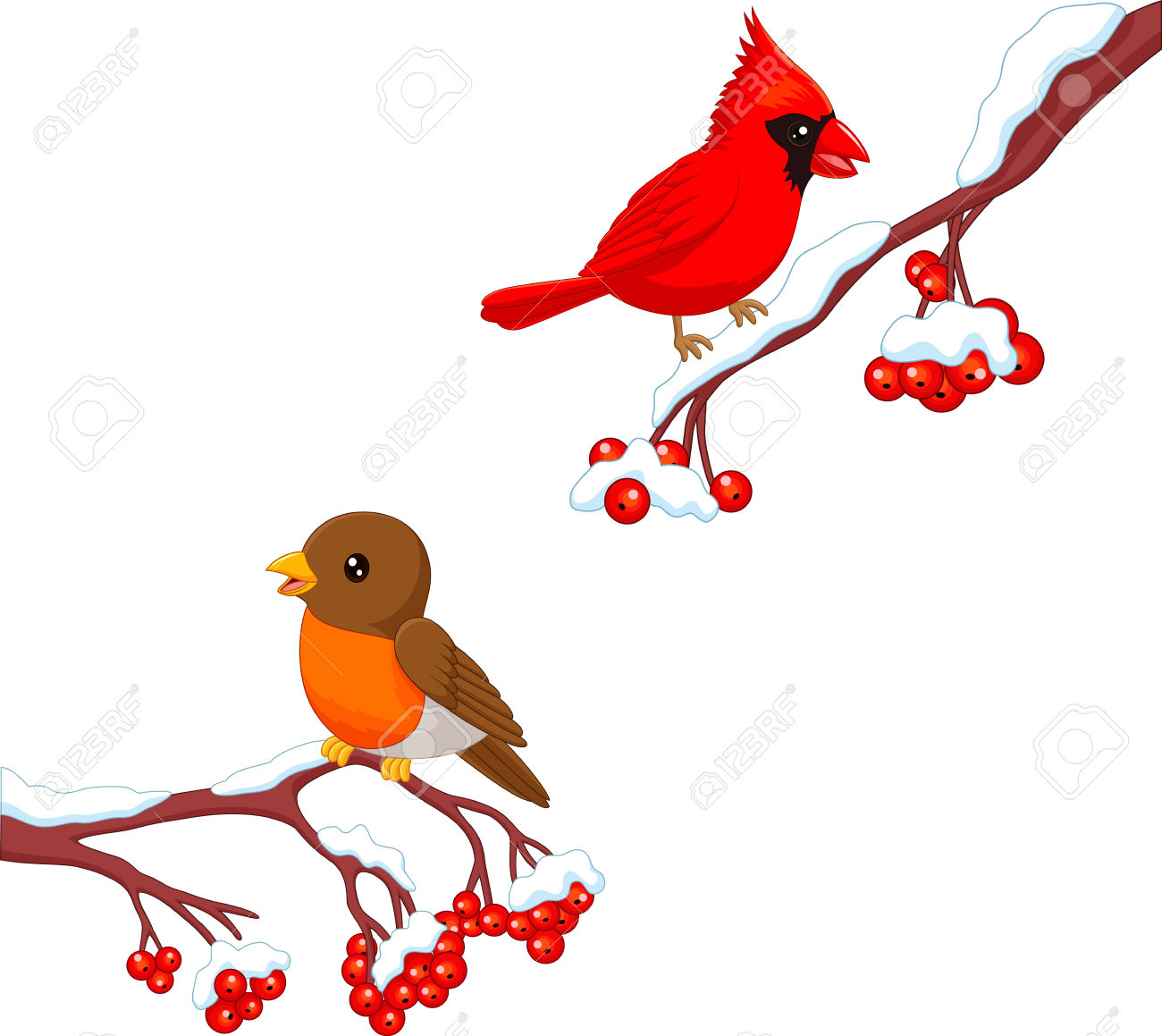 2,807 Robin Stock Vector Illustration And Royalty Free Robin Clipart.