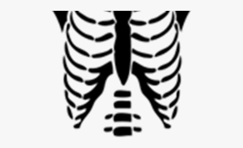 Skeleton Clipart Torso.