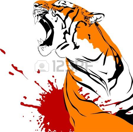 23,822 Tiger Stock Vector Illustration And Royalty Free Tiger Clipart.