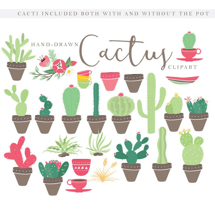 17 best ideas about Cactus Clipart on Pinterest.