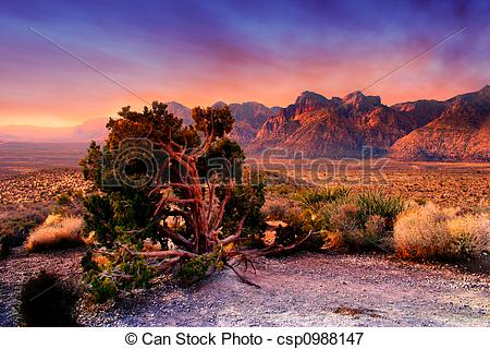 Picture of Red Rock Canyon, Nevada.