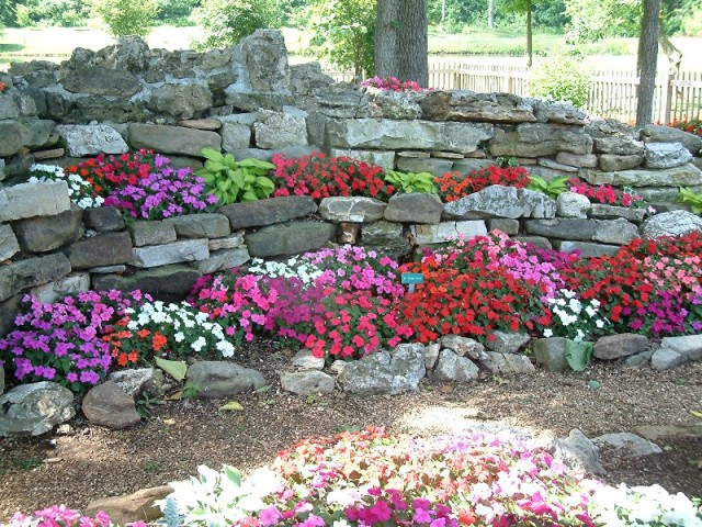 1000+ images about Shade & Rock Gardens on Pinterest.