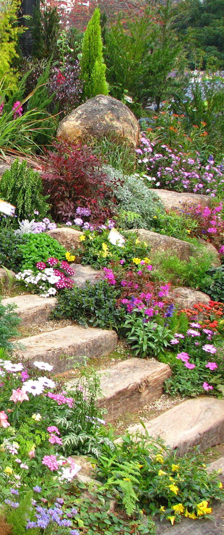 1000+ images about Rock garden ideas on Pinterest.