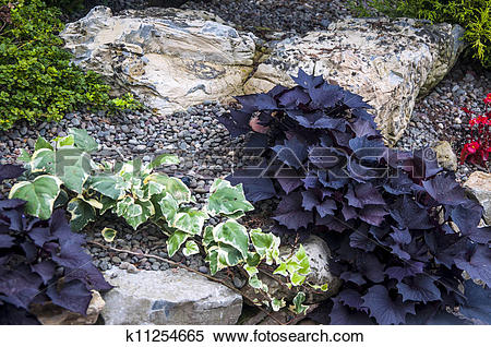 Stock Image of Rock Garden k11254665.
