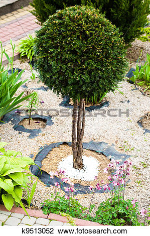 Stock Photo of Beautiful rock garden k9513052.