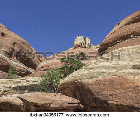 "Picture of ""Rock formations, Needles, Monticello, Utah, United."