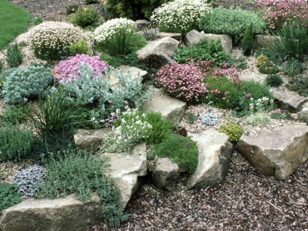 1000+ images about Rock garden ideas on Pinterest.