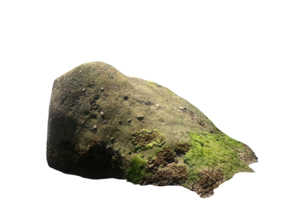 Rock PNG Images Transparent Free Download.