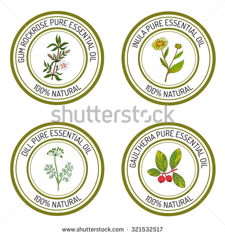 Rockrose Stock Photos, Royalty.