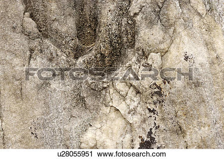 Stock Photography of A rough rock surface u28055951.