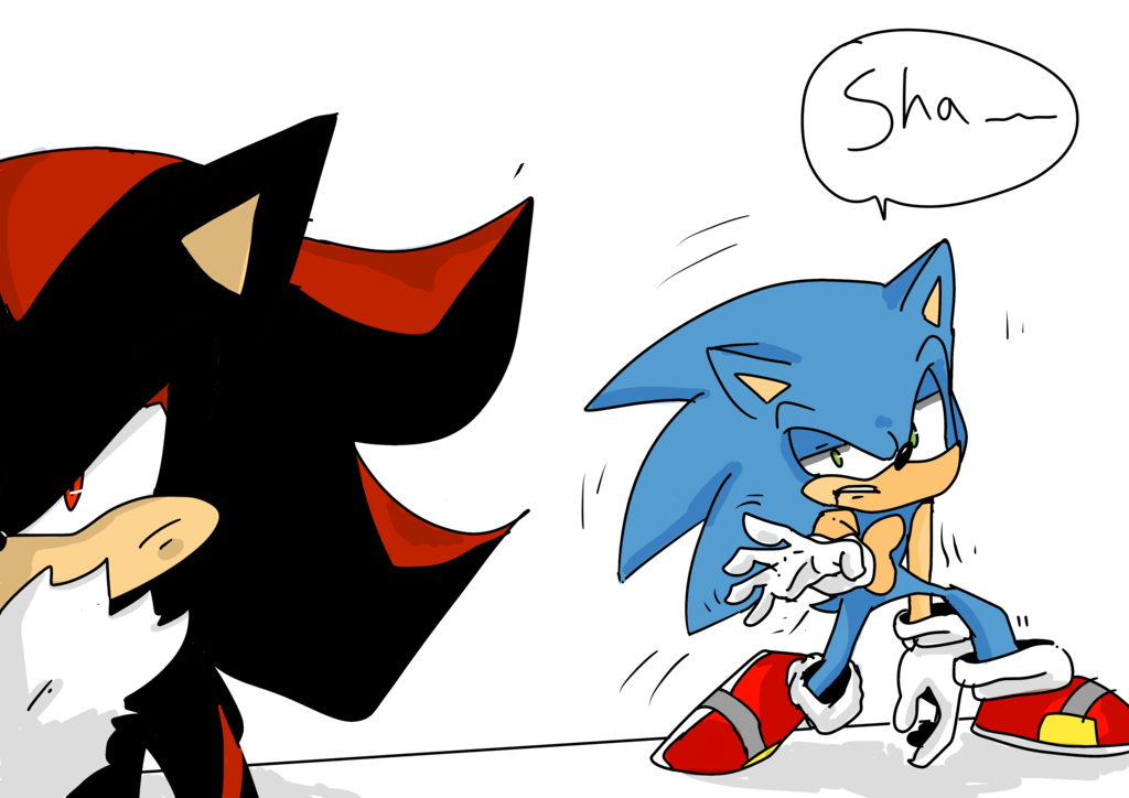 Sonic and Shadow on Sonic.