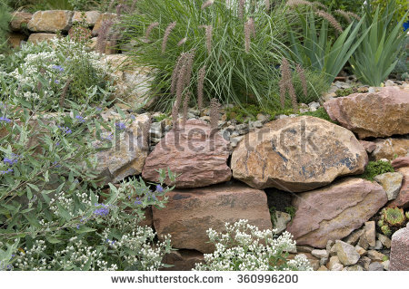 Rockery Stock Photos, Royalty.