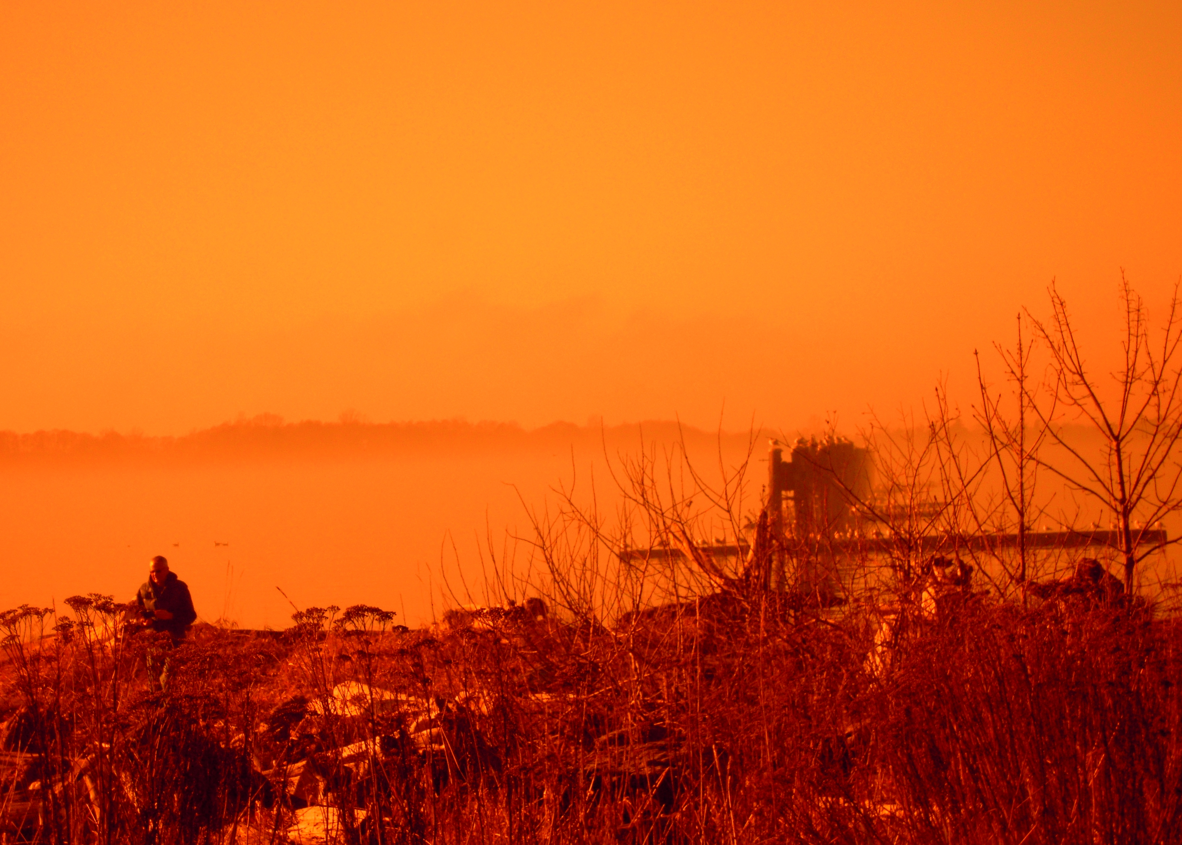 Richmond South Dyke In Fog Man In Sunglasses Rocks Wood Shore.