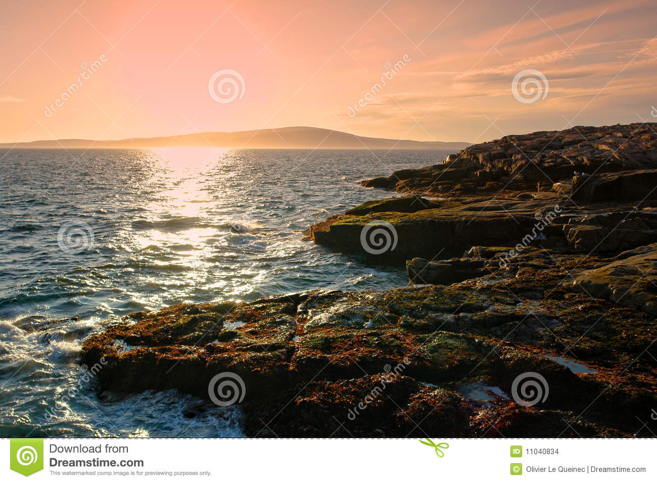 Coast Of Maine Rocky Shore In Acadia National Park Stock Images.