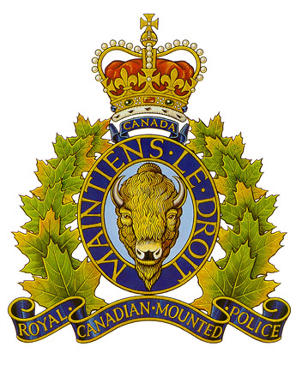 Former Valemount mountie faces fraud charge.
