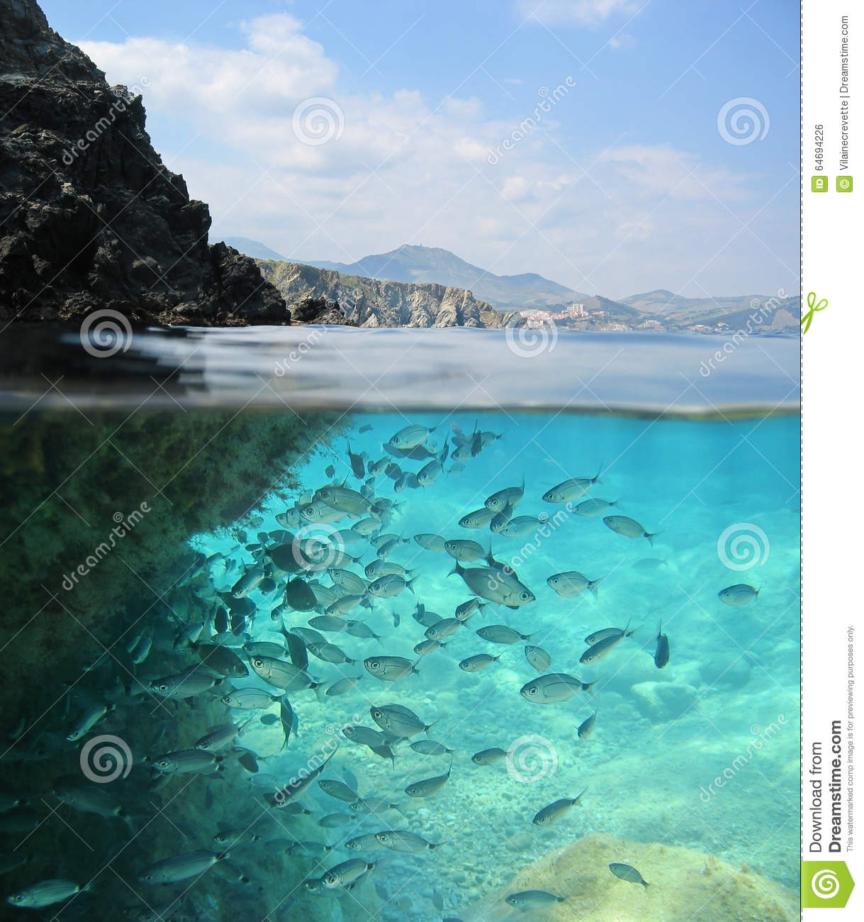 Rocky Shore With School Of Fish Underwater France Stock Photo.