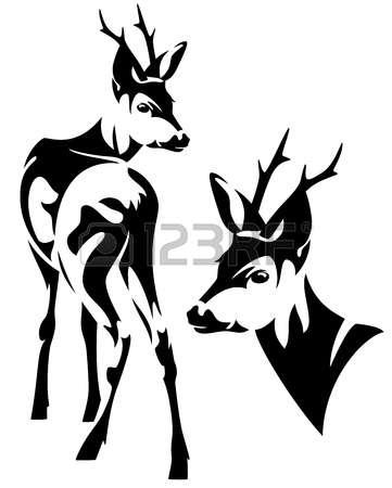 622 Roe Deer Stock Vector Illustration And Royalty Free Roe Deer.