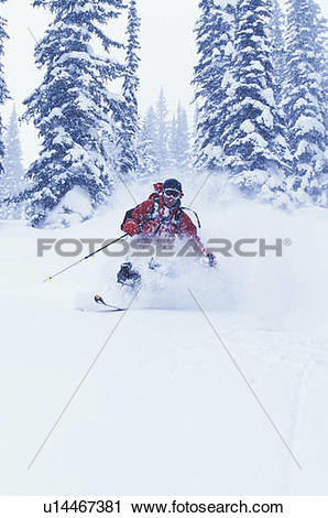 Stock Photography of Young man skiing fresh powder during.