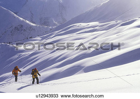 Stock Photo of Skiers ski touring in Ursus Minor Basin, Rogers.