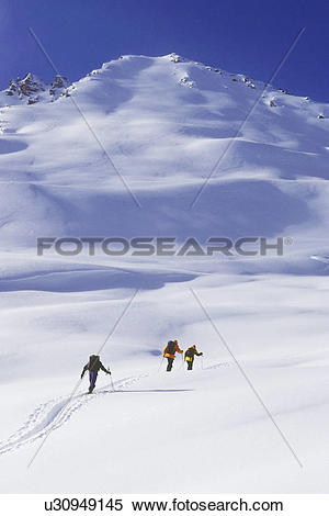 Stock Image of Skiers ski touring in Ursus Minor Basin, Rogers.