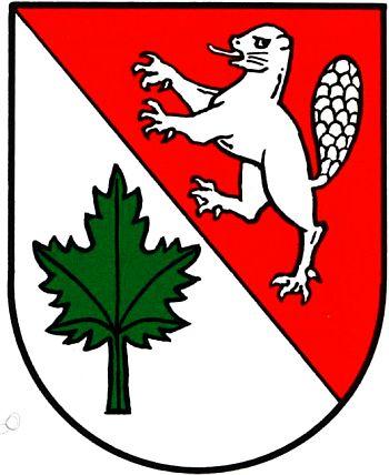 Ahorn (Rohrbach).
