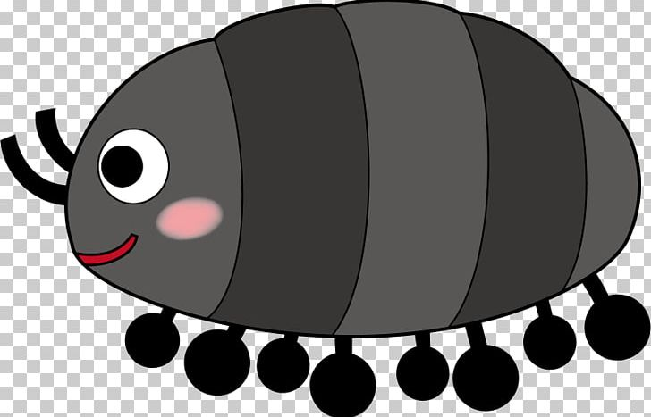 Insect Roly.