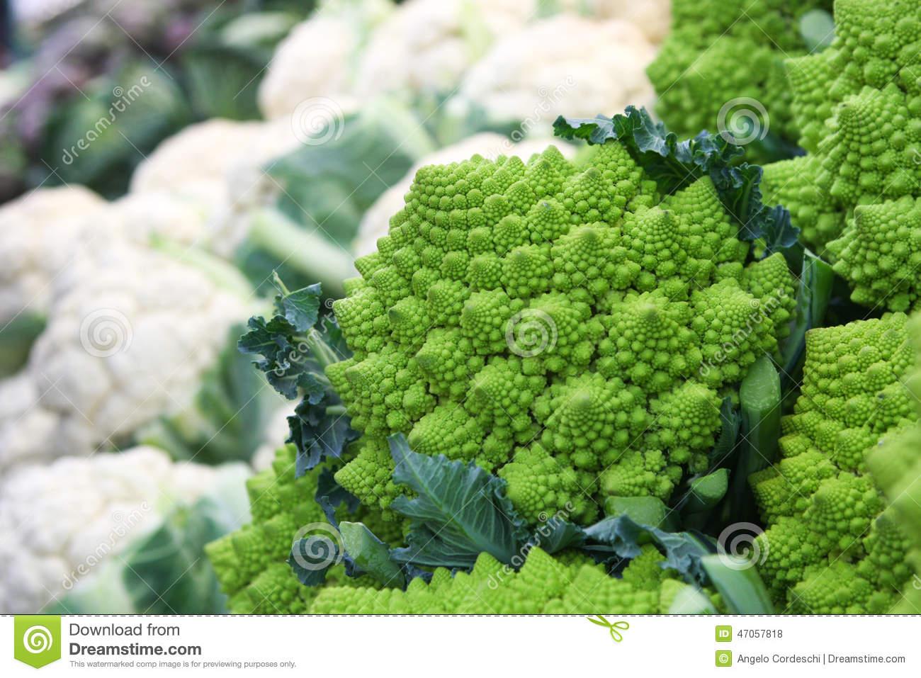 Romanesco Broccoli Cauliflower Stock Photography.