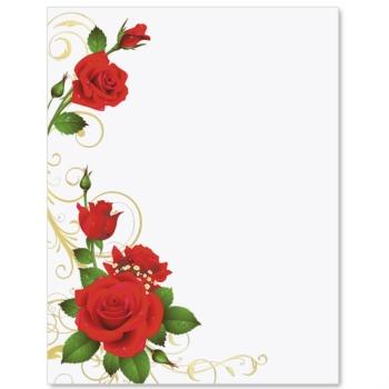 Best Rose Border #7725.
