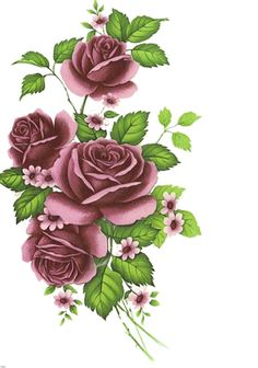 Romance Roses Collection.