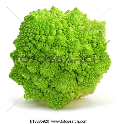 Stock Photography of romanesco broccoli k18385920.