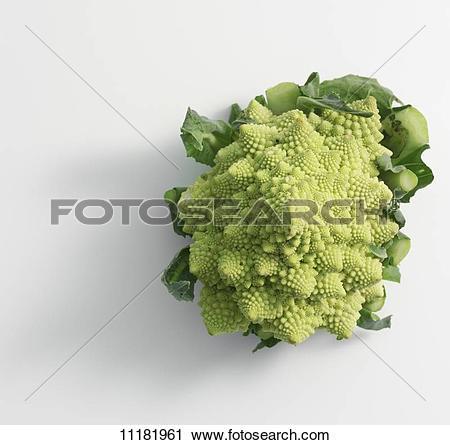 Stock Photography of Romanesco broccoli 11181961.