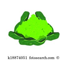 Romanesco Clipart Royalty Free. 8 romanesco clip art vector EPS.
