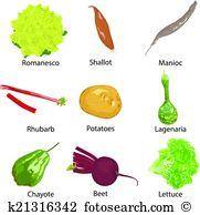 Romanesco Clipart Royalty Free. 8 romanesco clip art vector EPS.