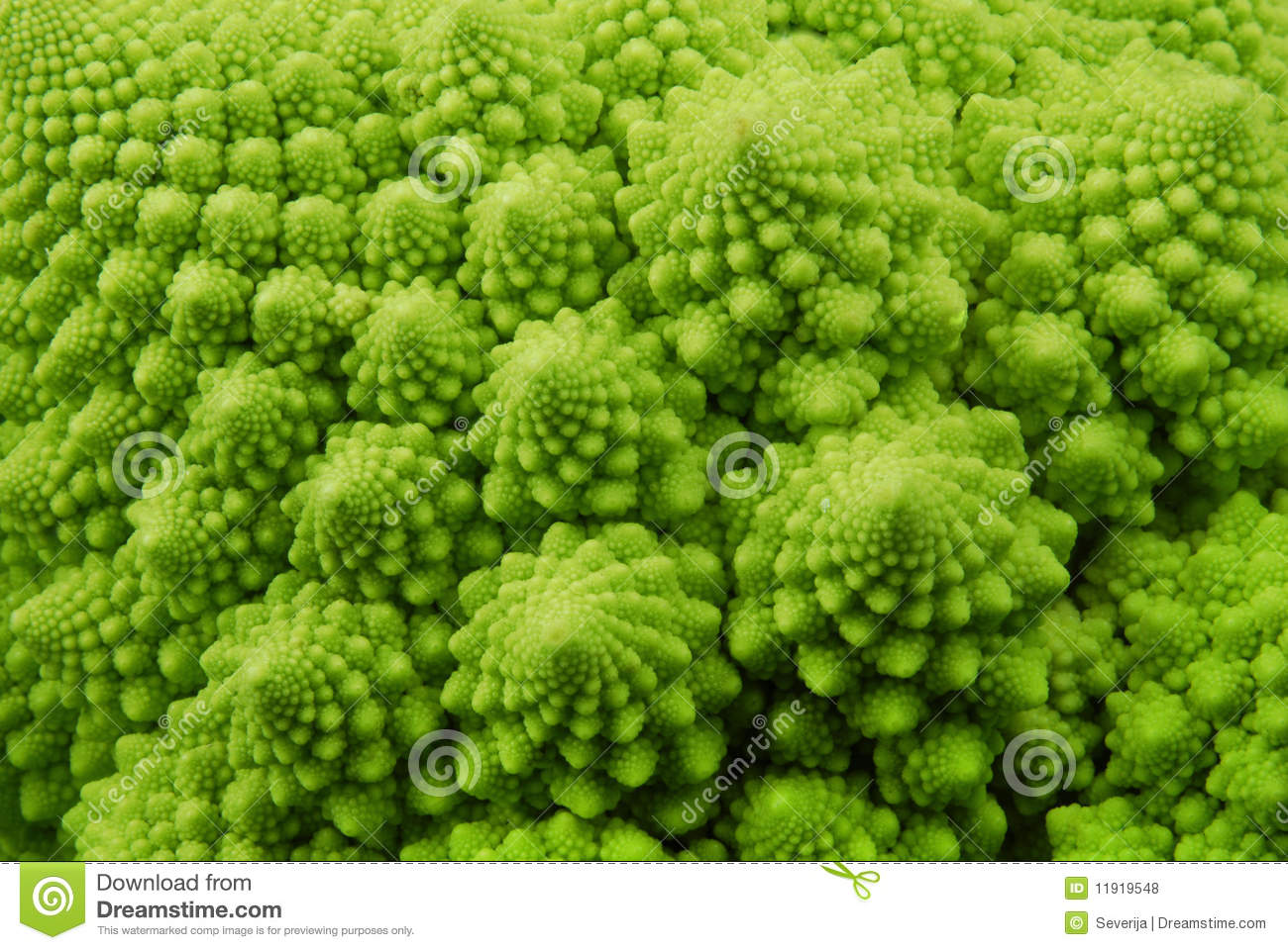 Romanesco Broccoli Royalty Free Stock Photos.