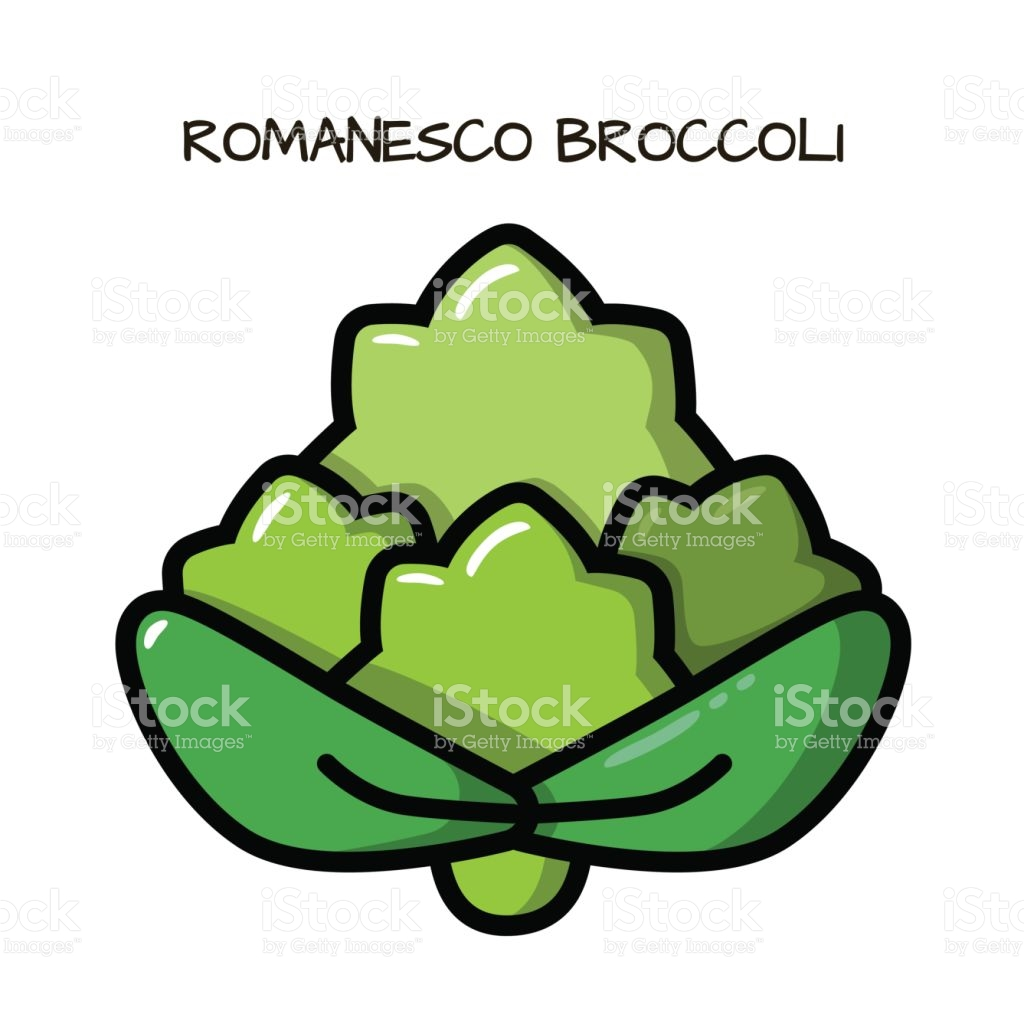 Icon Romanesco Broccoli On A White Background Illustration With.