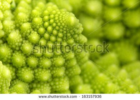 Romanesco Broccoli Stock Photos, Royalty.