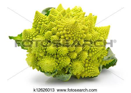 Stock Photo of Romanesco broccoli cabbage isolated k12626013.