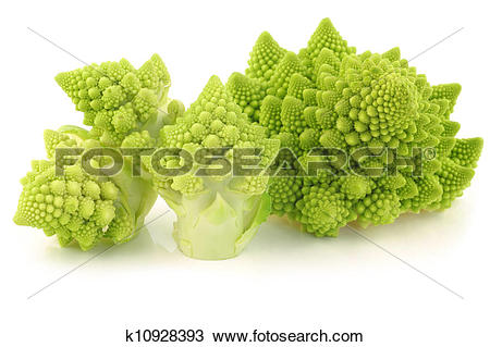 Stock Photo of freshly cut Romanesco broccoli k10928393.