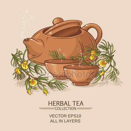 Rooibos Stock Vectors, Royalty Free Rooibos Illustrations.
