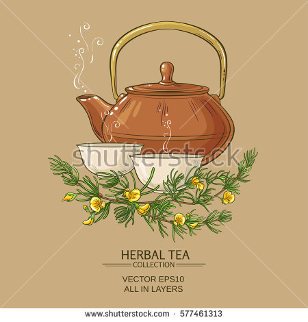Rooibos Tea Stock Vectors, Images & Vector Art.