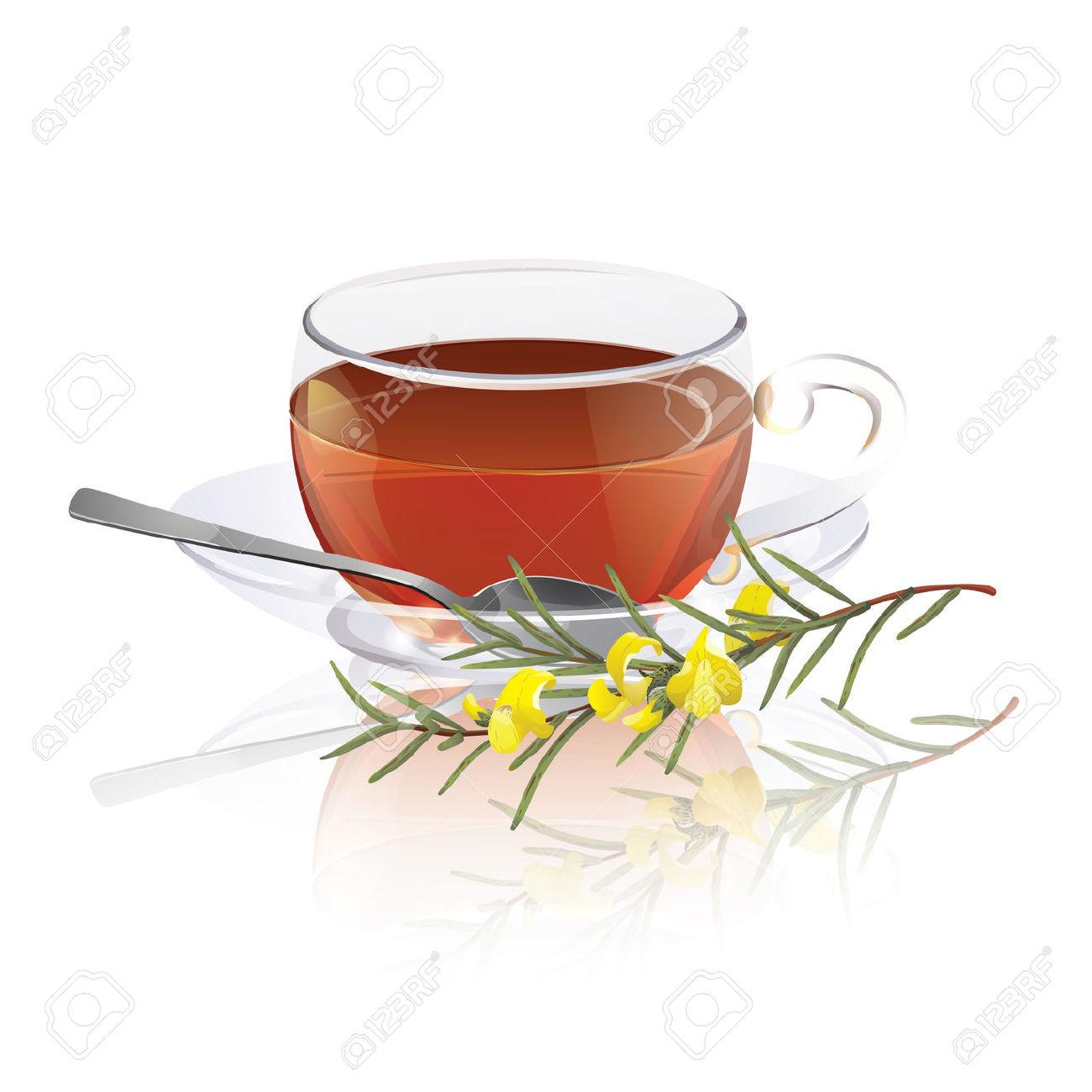 Rooibos Tea Royalty Free Cliparts, Vectors, And Stock Illustration.