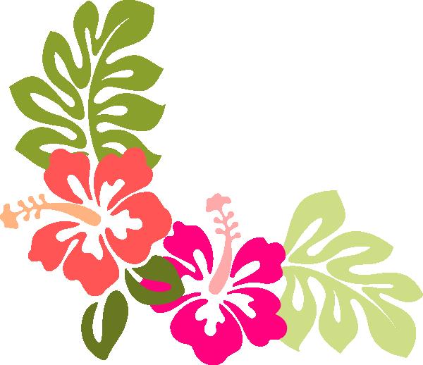 Hibiscus Vector.