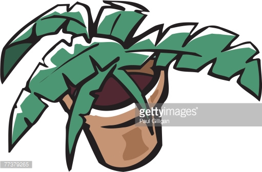 Drawing Of A House Plant Vector Art.
