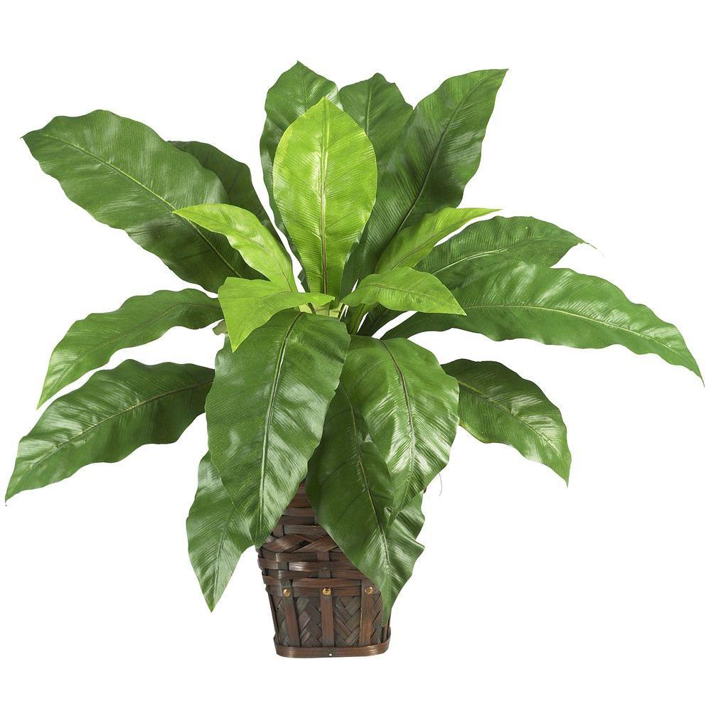 12 in. H Green Ivy Ledge Plant (Set on Foam) Silk Plant.