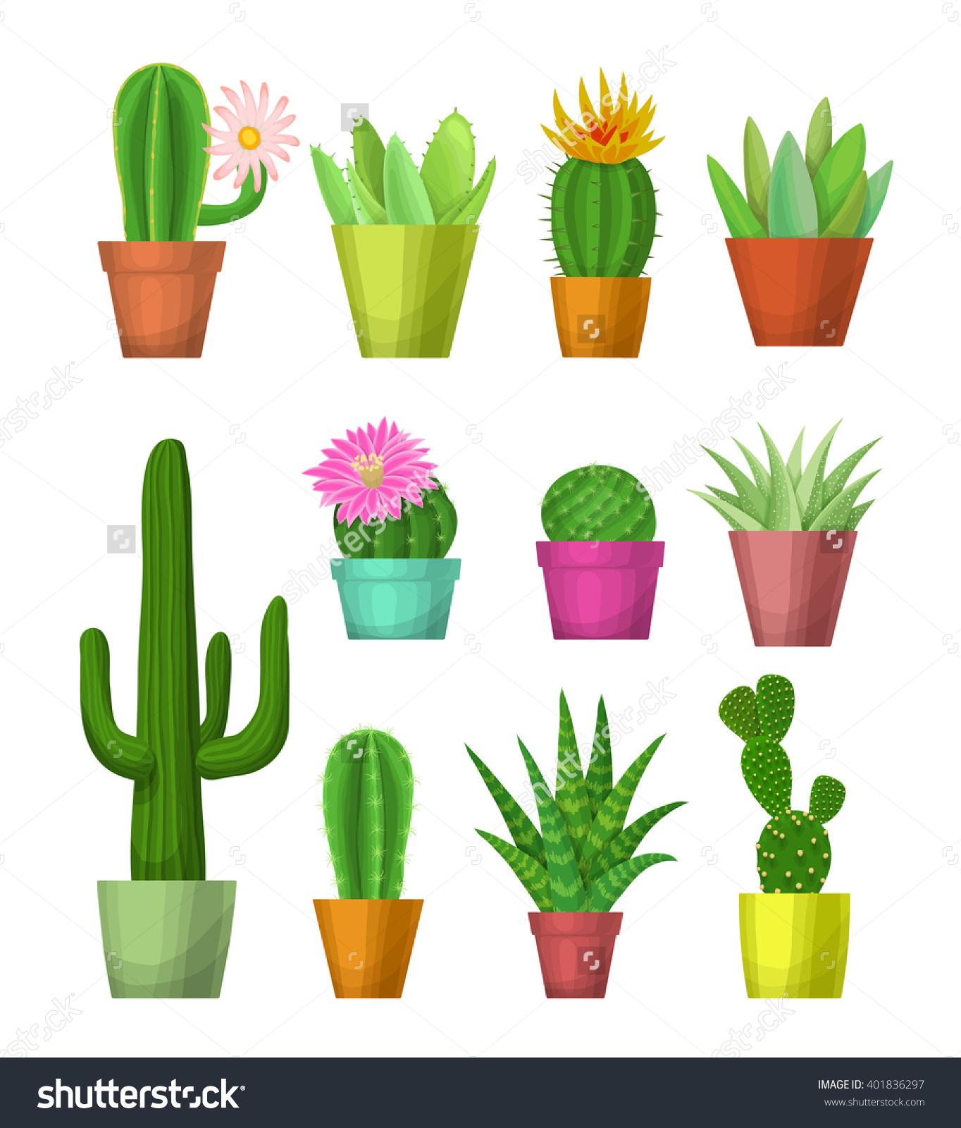 House Plants Pots Cacti Succulents Flowers Stock Vector 401836297.